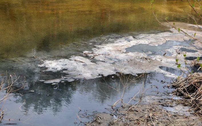 Хомору обстежили екологи