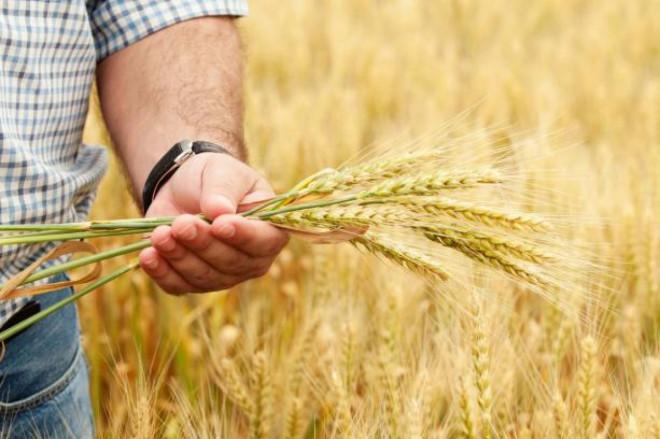 Аграрії Хмельниччини підвели підсумки року