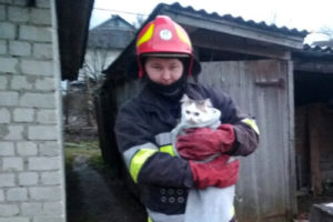Білогірщина врятували кота