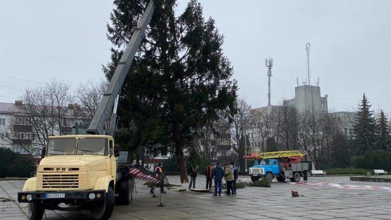 У Шепетівці вже встановили 20-метрову ялинку до Новорічних свят