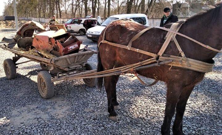 На Ізяславщині  поліцейські впіймали викрадачів металу