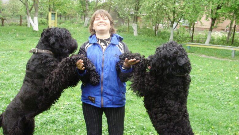 Кінолог Ольга Бєляєва чверть століття тренує чотирилапих чемпіонів