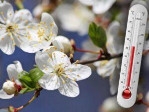 Погода Шепетівка, квітень