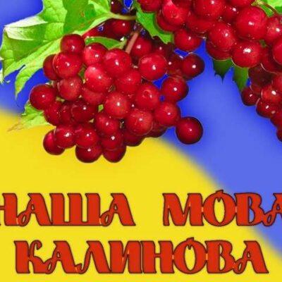 Українська чи російська? Якою мовою більше спілкуються на Шепетівщині