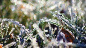 Заморозки, Шепетівський район, погода, прогноз