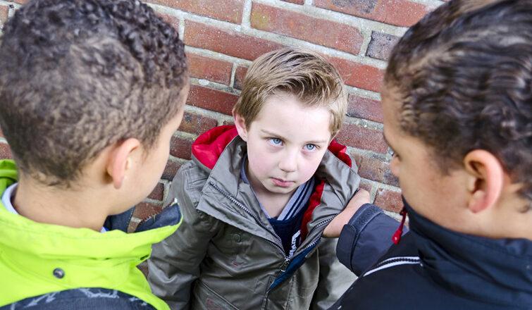 У Славуті оштрафували батька – його діти цькували однокласників