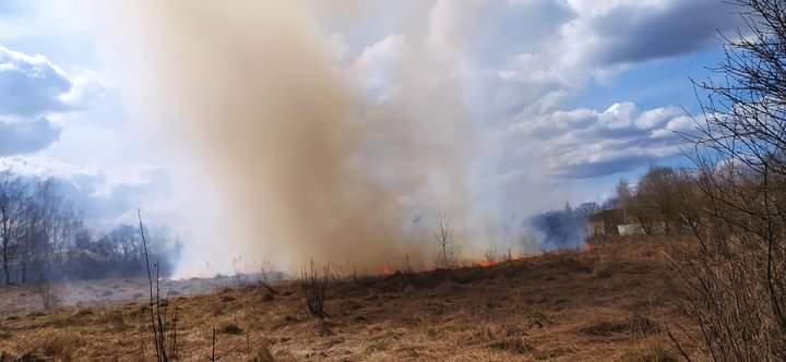 Через випалювання сухостоїв на Ізяславщині зайнялись поля