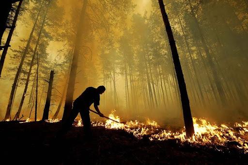 Метеорологи попереджають про пожежонебезпечні умови в Шепетівському районі. Коли та де може зайнятись?