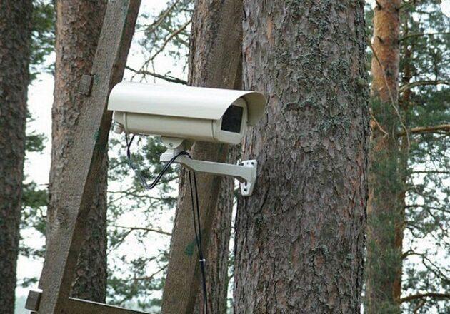 На Ізяславщині відеокамери спостерігають за лісами