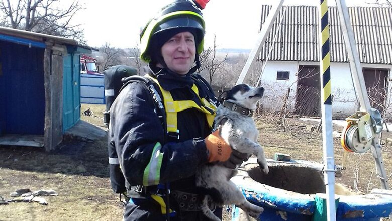 На Білогірщині витягли з колодязя агресивного собаку