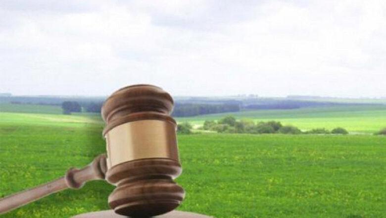 У Нетішині троє осіб хотіли незаконно привласнити 8 га землі