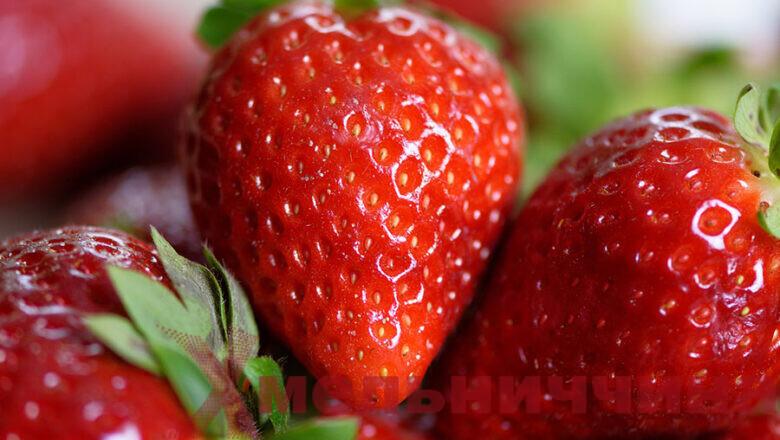 Сезон полуниці на Шепетівщині: як правильно обрати смачні, а головне – безпечні ягоди