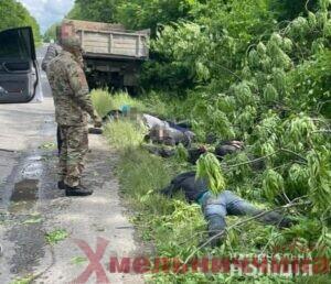 Чорні лісоруби, Хмельниччина, незаконна вирубка