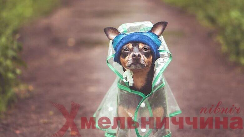 Погода на Шепетівщині буде строкатою: що обіцяють синоптики