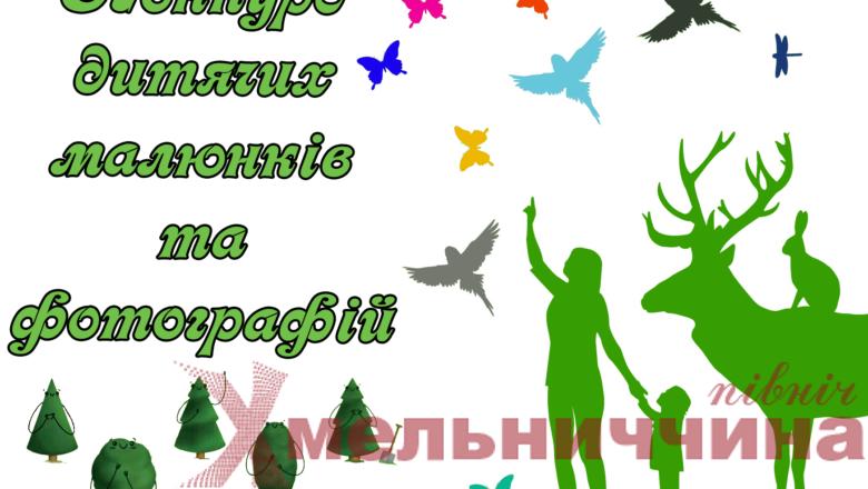 Національний природний парк «Мале Полісся» оголошує конкурс «Лісові пейзажі»