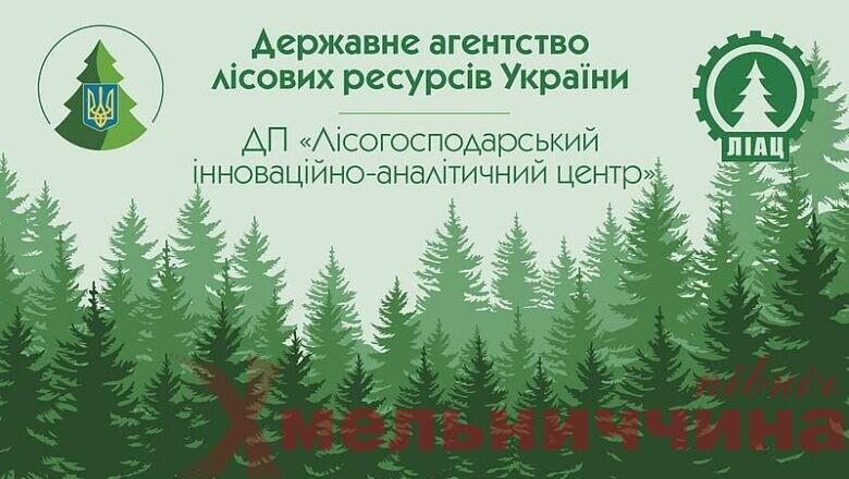 В Україні запустили новий телеграм-бот лісової галузі