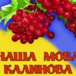 Українська мова, російська, Шепетівщина, статистика